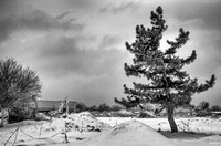View from NE corner in  snow BW