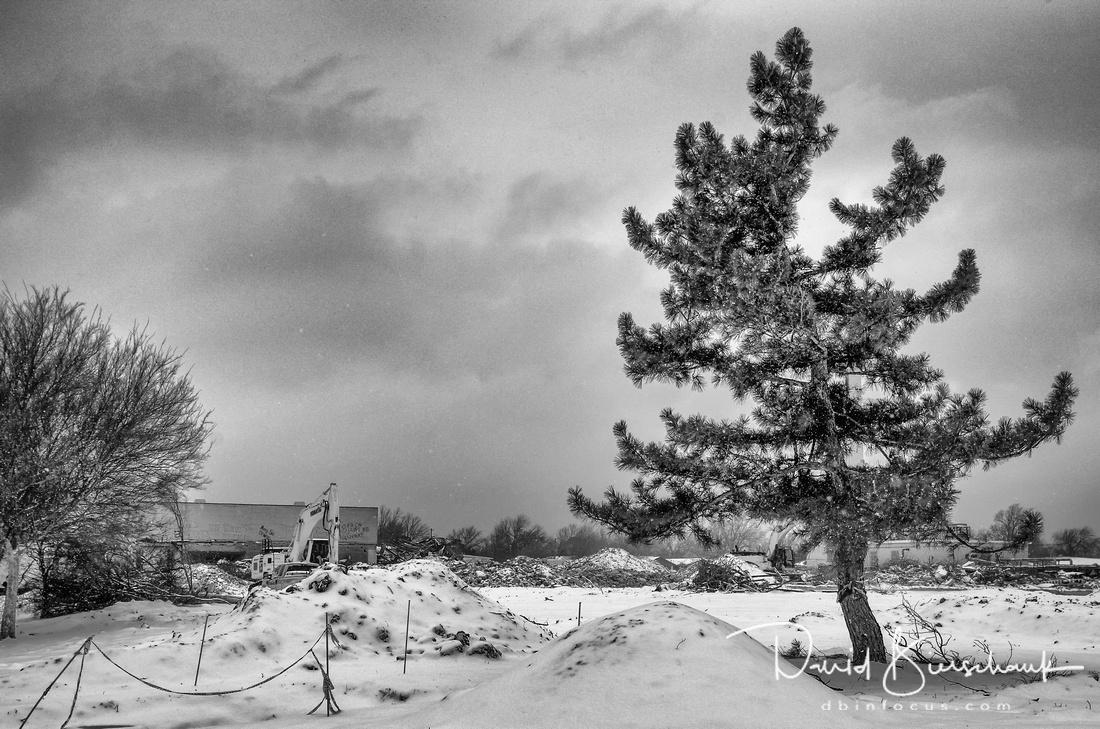 View from NE corner in  snow BW